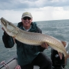 "50"" Musky Caught on Wooly Bully!"