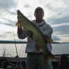 "40"" Musky Caught on Wooly Bully!"